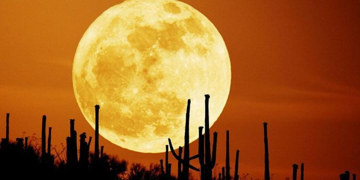 Do the phases of Moon effects on human behavior  #fullMoon #biggestMoon #supermoon #health #hot #happening #life #Lifestyle #moon #news