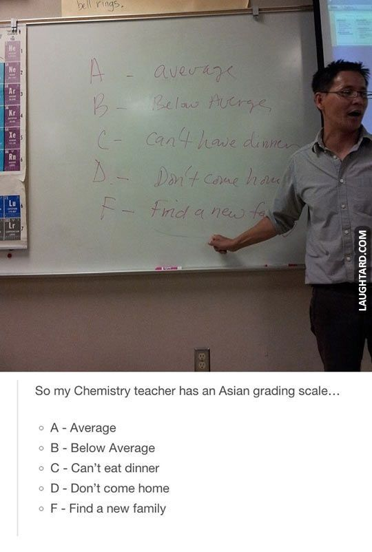 I feel like my Asian history teacher would write this