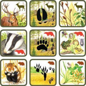 * Natuurspel! Zoek het dier bij zijn sporen en voedsel! 1-6