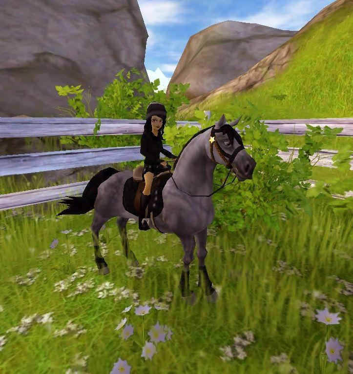 9 best star stables fjord horses images on pinterest. Black Bedroom Furniture Sets. Home Design Ideas