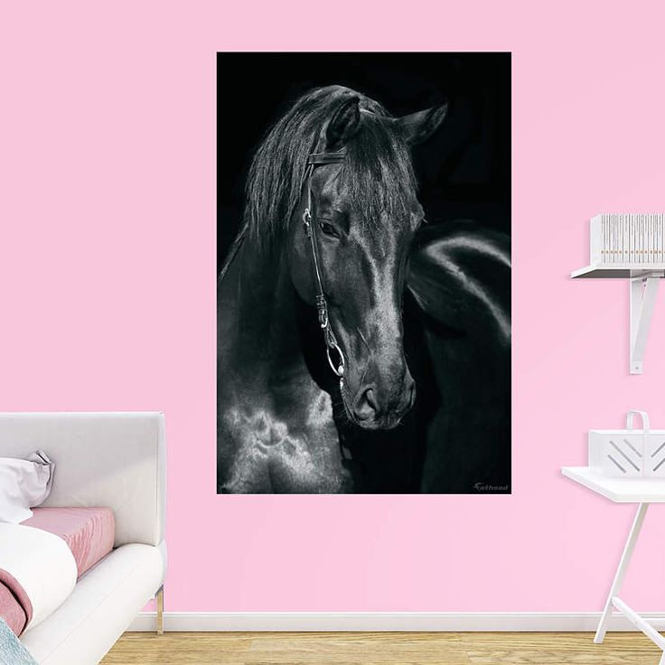 The 25+ best Horse mural ideas on Pinterest | Horse bedrooms ...