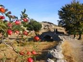 Het prachtige en bijzonder afwisselende landschap van de Zuidfranse Cévennen is bij SNP als sinds de oprichting een favoriete wandelbestemming. Meer informatie: http://www.snp.nl/reis/frankrijk/tour_de_france_cevennen