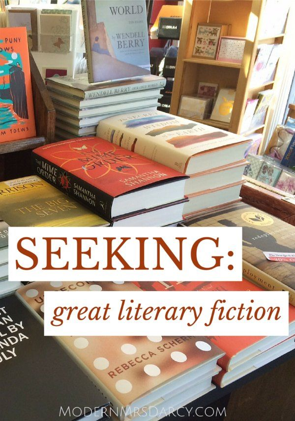 Seeking: great literary fiction. These books have great stories AND beautiful writing.