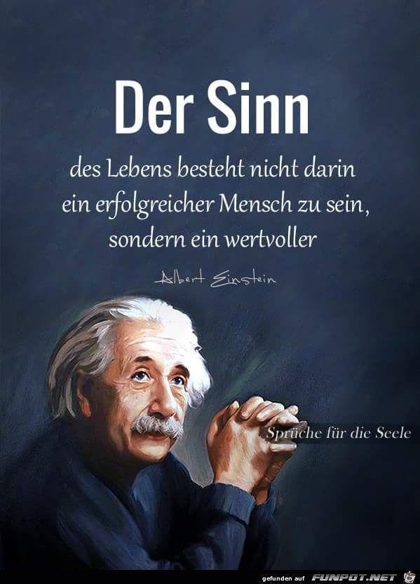 Pin Von Obajan Auf Neupinsclub Einstein Zitate Spruche Weisheiten Zitate