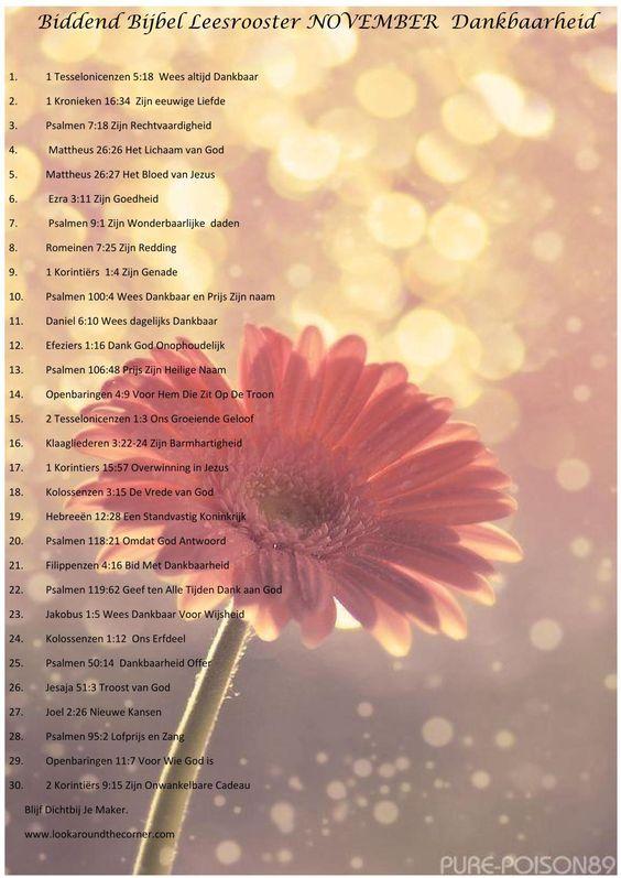 Citaten Dankbaarheid : Beste ideeën over dankbaarheid op pinterest gelukkig