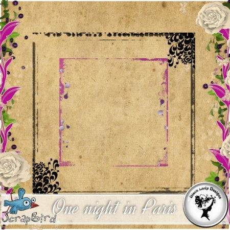 One night in Paris - Overlays by Black Lady Designs