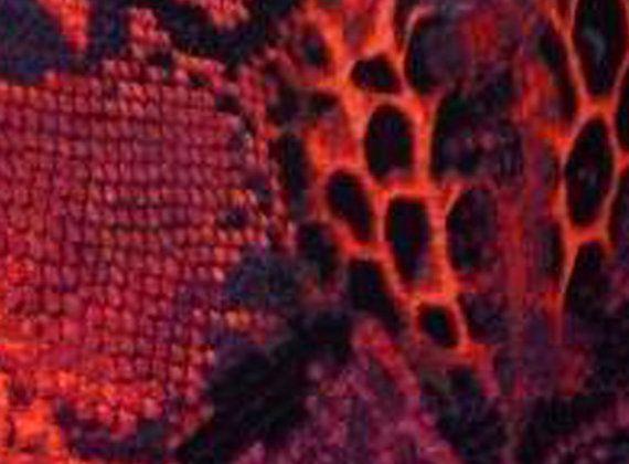 Bespoke Burgundy & Purple Velvet Leopard Print by TheAtticofKitsch