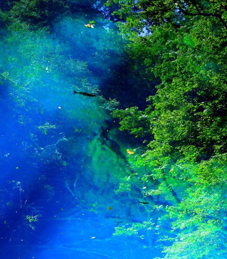 十二湖 青い湖