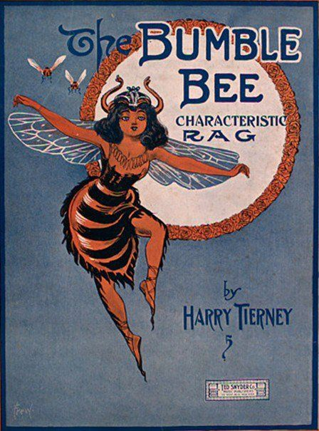 Bumble Bee Rag sheet music, 1909