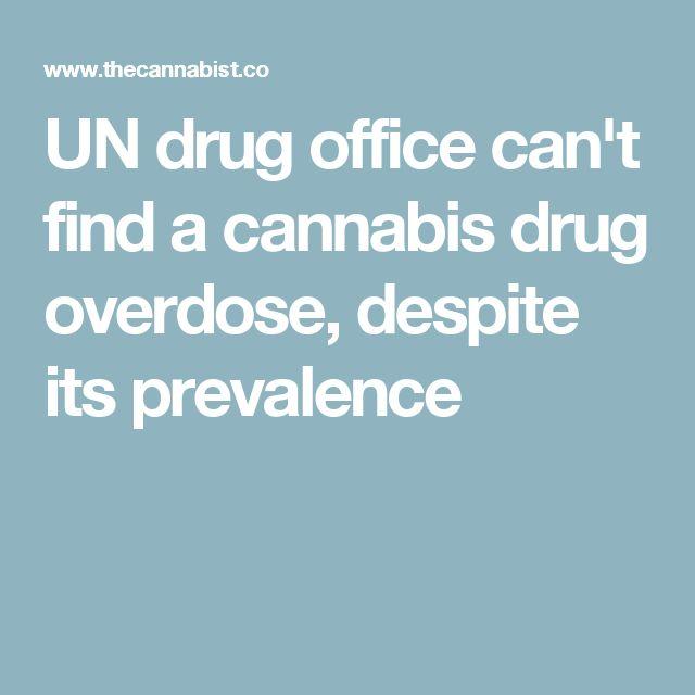 UN drug office can't find a cannabis drug overdose, despite its prevalence