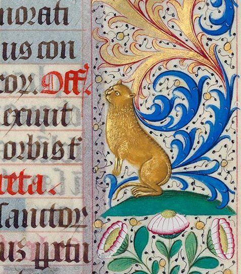 Golden cat. Missal, France ca. 1492 (BnF, Latin 16827, fol. 285r)