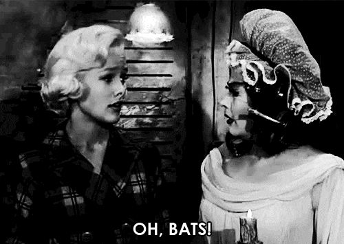 Pin by Jessica Martin on ♕ That girl. | The munsters, The ...