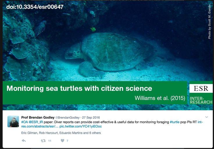 citizen science & marine turtles @Fuentes_MMPB @jessmozturtles @jcu @turtlesatjcu @sjpierce