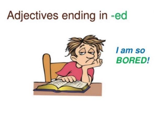 Contoh Kalimat Adjective Berakhiran- ed Lengkap Dengan Terjemah - http://www.studybahasainggris.com/contoh-kalimat-adjective-berakhiran-ed-lengkap-dengan-terjemah/