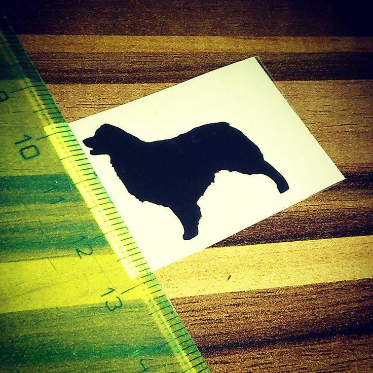 Naše nejmenší nálepka | Our smallest sticker #australianshepherd #australian #shepherd #australskyovcak #smallest #smalleststicker #nejmensinalepka #malanalepka #nalepka #byblackberry #odblackberry #dog #newsticker