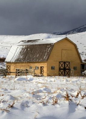 Nice old yellow barn!!