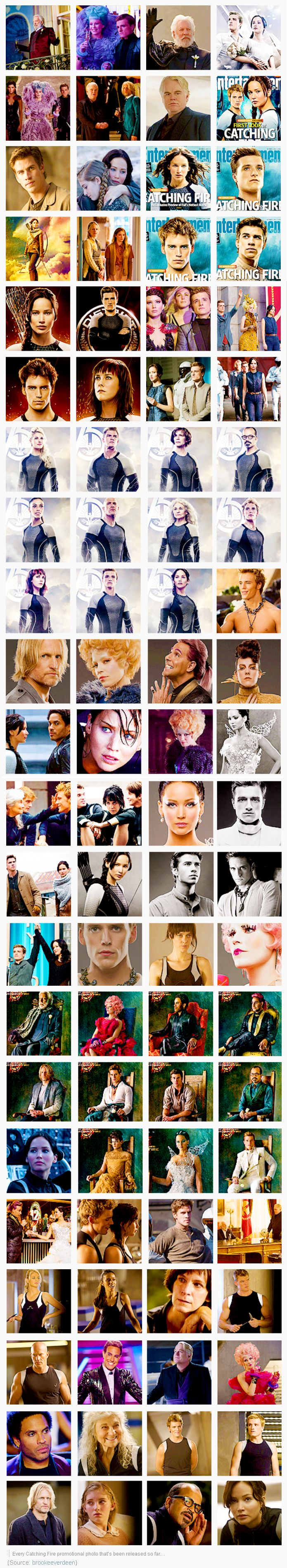 Every Catching Fire promotional poster that's been released! We're not obsessed. Really.
