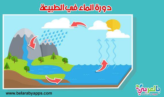 بحث عن دورة الماء في الطبيعة حالات الماء موضوع تعبير عن الماء سر الحياة دورة الماء في الطبيعة موضوعات بحثية ل Character Family Guy Fictional Characters