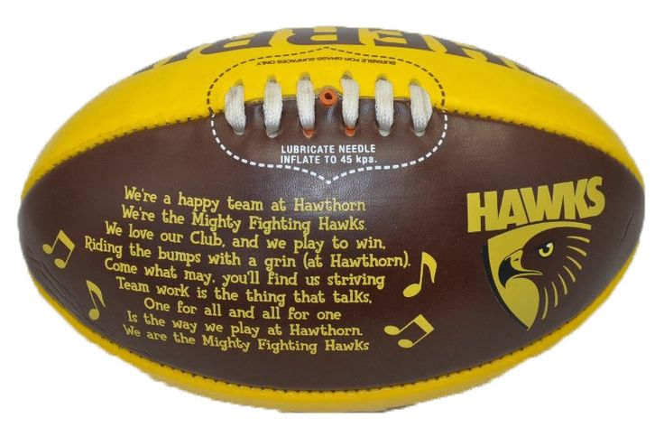 Hawthorn Hawks Team Song Ball