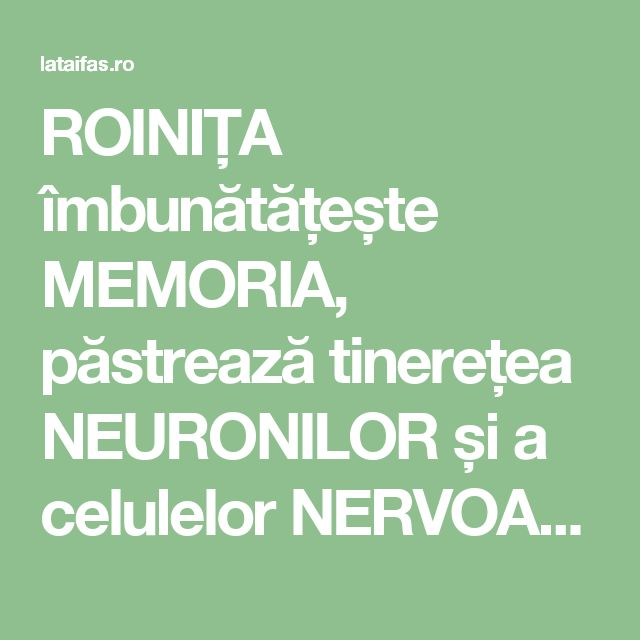 ROINIȚA îmbunătățește MEMORIA, păstrează tinerețea NEURONILOR și a celulelor NERVOASE | La Taifas