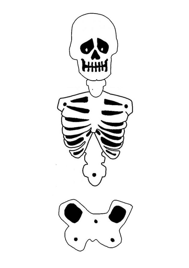 Célèbre Plus de 25 idées uniques dans la catégorie Squelette en anglais  YR93