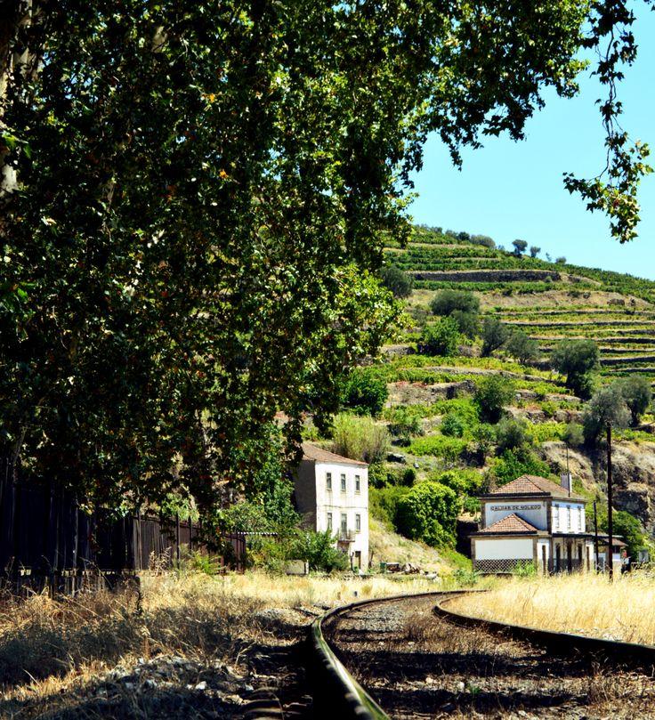 Discover Douro Valley like a local. #NextStopDouro #OriginalDouroHotel #dourovalley #wanderlust #travelaroundportugal Original Douro Hotel by: Ana Alice Carneiro