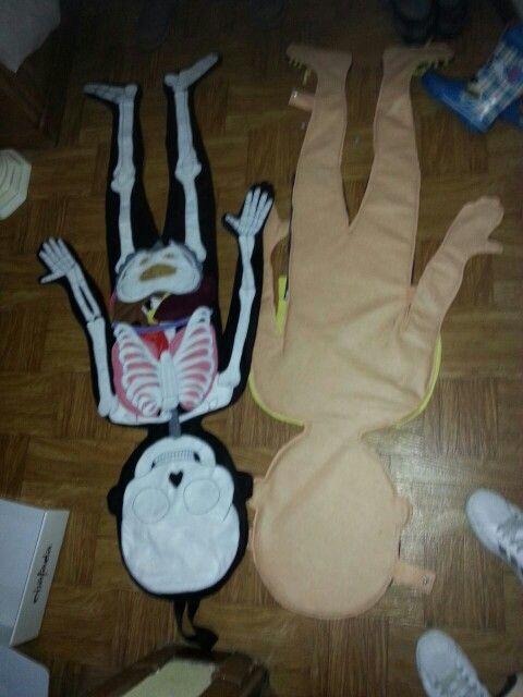 El cuerpo humano huesos