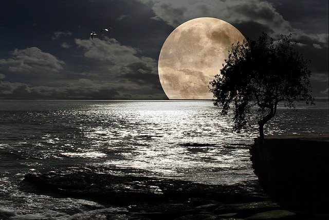 Silver Moon by DDA / Deljen Digital Art, via Flickr