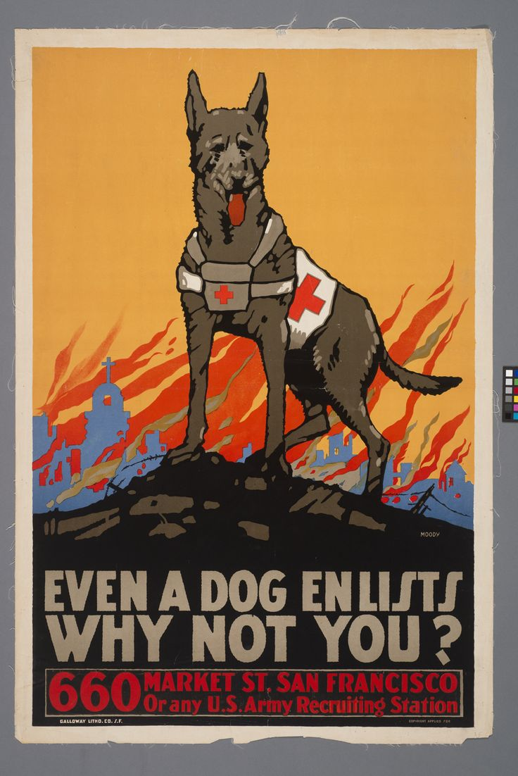WWI poster art- There is another one I like, it says something to the effect of, 'I bring home sons and daughters... What is YOUR job?!'~ LOVE dogs