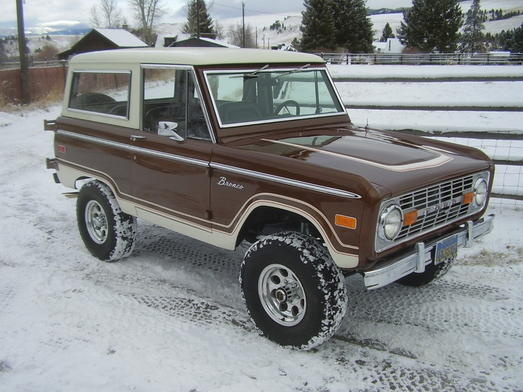 Dark brown classic ford bronco uncut..Gary Robinson. We could do some details like this one.