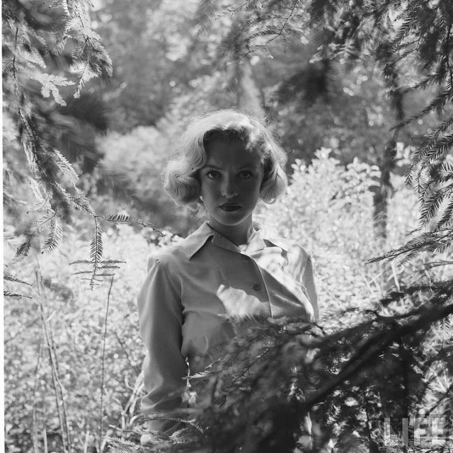 Rare Photographs of a Young Marilyn Monroe Goes Hiking in the Woods, August 1950 ~ vintage everyday