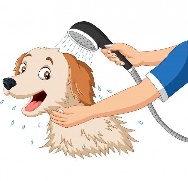 Perro De Dibujos Animados Banandose Con Premium Vector Freepik Vector Personas Perro De Dibujos Animados Perros En Caricatura Perros