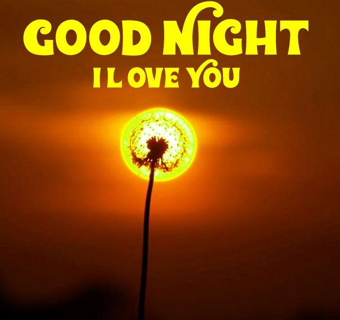 Sunset Dandelion Good Night I Love You Hd Wallpaper Download Good Night I Love You I Love You Images Love You Images Good night images hd wallpaper