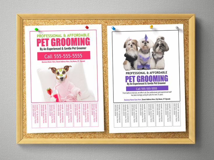 105 Best Groomers Advertising Templates Ideas Images On Pinterest