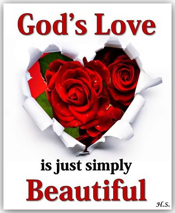 Gods Love Is Just Simply Beautiful Quotes Inspirational Rose Day Wallpaper Flower