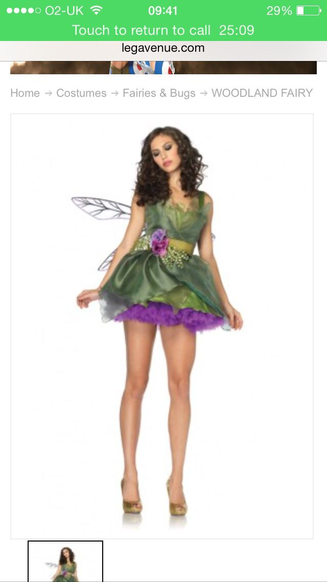 The Nature Fairy Costume (Leg Avenue)