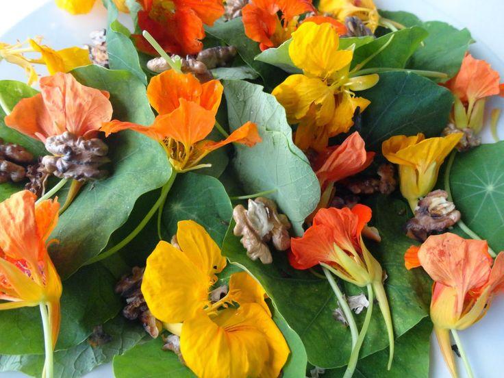 Eetbare bloemen in de moestuin | Groenten uit Edegem