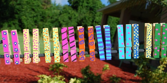 Painted clothes pins