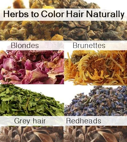 Color, Highlight & Lighten Hair Naturally with Herbs: chamomile, sage, henna, rosemary