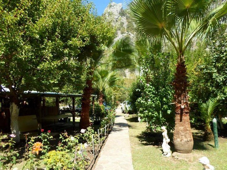 Çıralı'da bulunan Oran Pansiyon Ağaç Evler, renkli çiçeklerle süslü bir bahçenin içinde yer almaktad   Çıralı #cirali #ciralihotel #ciralipension #ciralihostels #pension #hostel #lodge #ciralilodge #layover #urav #antalyahotels #antalyapension #antalyalodge #antalya  #mediterranean #chimera #ciraliapart #antalyaapart