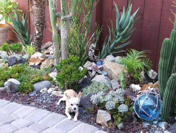 Liven Things Up.: Nadia's Ocean-themed succulent garden in California - 37 Best Dream Mexican Garden Images On Pinterest Mexican Garden