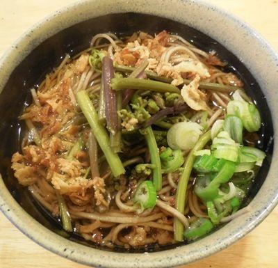 蕨とフライド オニオンの山菜蕎麦
