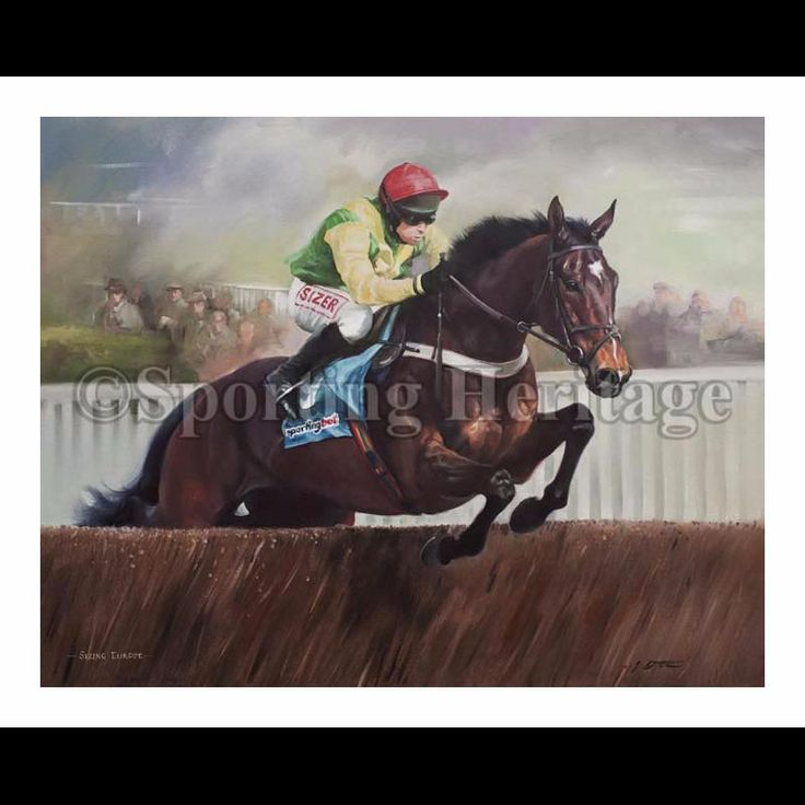 Sizing Europe- A champion racehorse with numerous Grade 1 wins, including the Arkle Challenge Trophy and the Queen Mother Champion Chase at the Cheltenham Festival, the Tingle Creek Chase and the Champion Chase at the Punchestown Festival. Trained by Henry de Bromhead and ridden by Andrew Lynch.