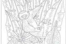 Forest Mandala-Wald-Mandala coloring page