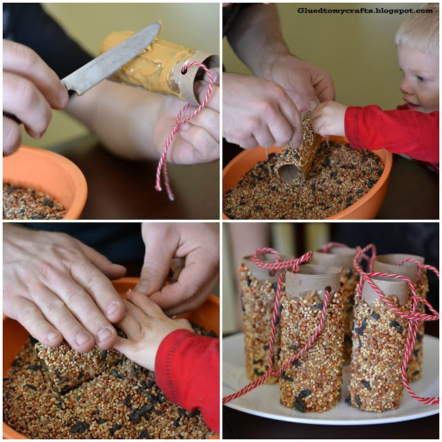 Bird Feeders made with toilet paper rolls, peanut butter & bird seeds #dign #ad