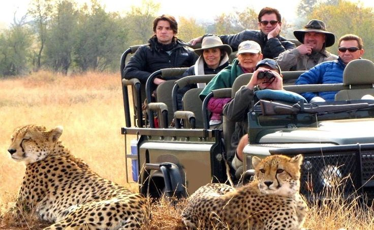 Deal Direct with the Legendary African Safari Operators based on the Ground in Africa. Taga Safaris have been Tailormaking African Safaris since 1994.