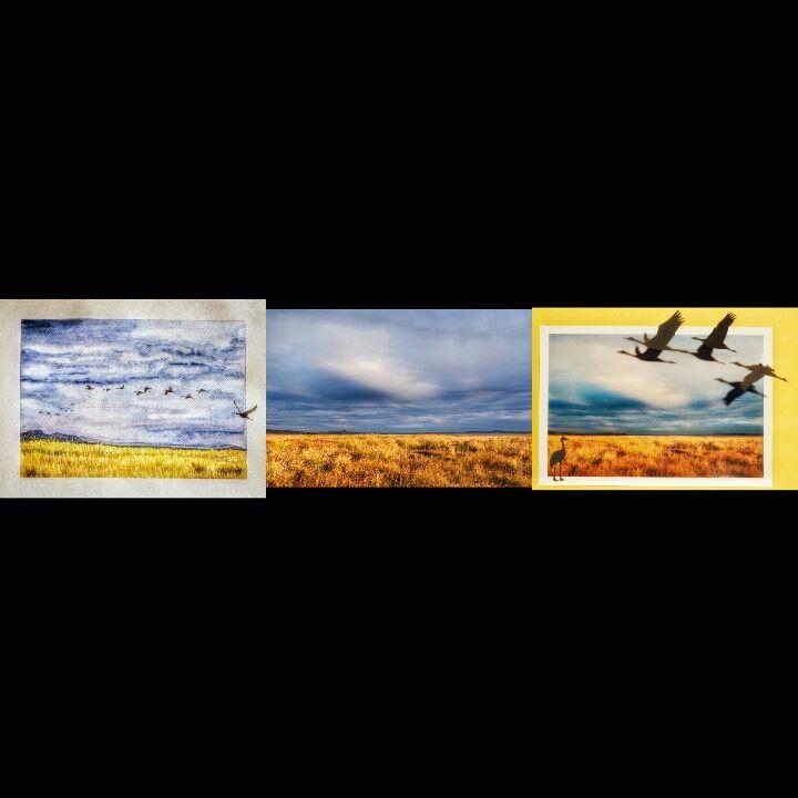 """Tríptico:""""Sombras en el aire"""". Acuarela, foto y fotosombras. Obras de la instalación """"1.000 grullas para la PAZ"""""""