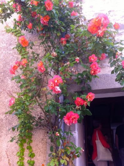 Roses over the Doorway. 28 Rue des Remparts
