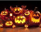 Halloween op de boerderij! Komen jullie deze herfst vakantie ook genieten van het boerenleven.