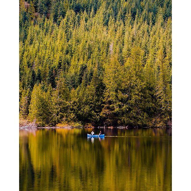 Floating on shades of green in Nanaimo on Vancouver Island.   Photo by @tomparkr via Instagram #explorebc #explorecanada